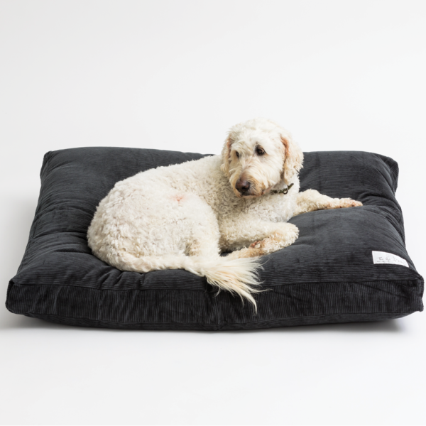 ironsand dog bed