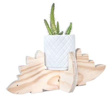 Steggy plant holder