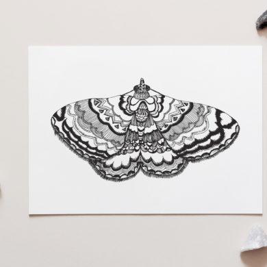Aztec Moth Art Print by NZ Artist Penny Royal