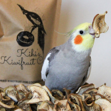 Kihi's Kiwifruit Chips - Dried Kiwifruit for Cockatiels and Parrots
